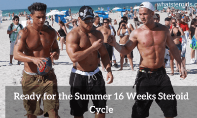 Summer 16 Week Steroid Cycle