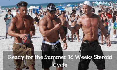 Ready for the summer 16 weeks steroid cycle