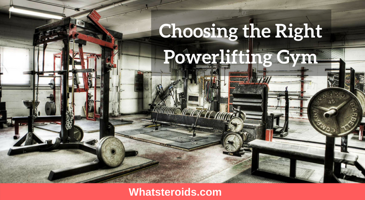 Choosing the Right Powerlifting Gym