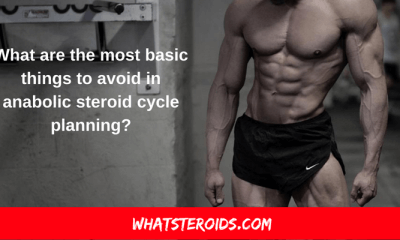 What are the most Basic Things to Avoid in Anabolic Steroid Cycle planning?