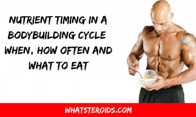 Nutrient Timing in a Bodybuilding Cycle: When, How Often and What to Eat