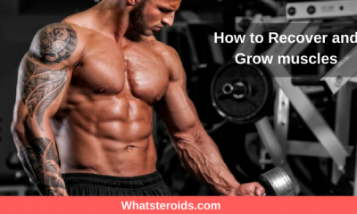 How to Recover and Grow muscles