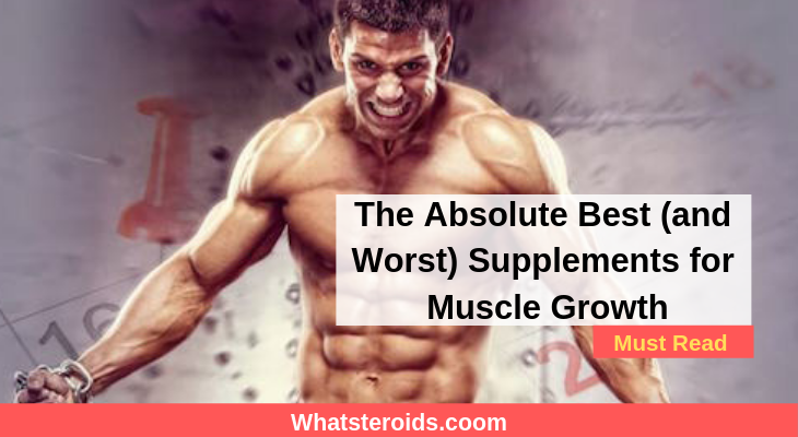 The Absolute Best (and Worst) Supplements for Muscle Growth