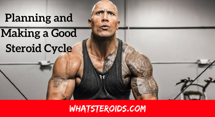 Planning and Making a Good Steroid Cycle