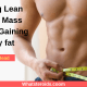 Gaining Lean Muscle Mass Without Gaining Body fat