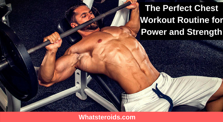 The Perfect Chest Workout Routine for Power and Strength