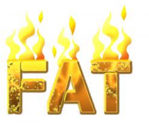 Effectively Burns Fat: