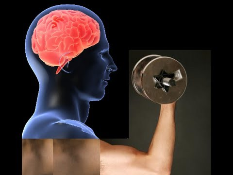 Connect the Muscle to Your Mind