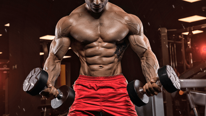 Oral Steroid Cycles for Cutting, Mass and Bulking