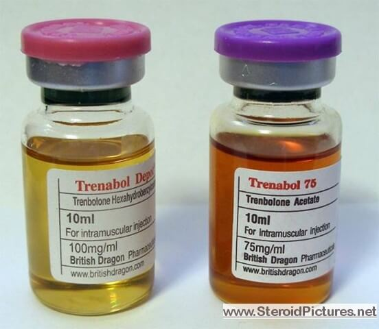 Trenbolone (Acetate & Enanthate)