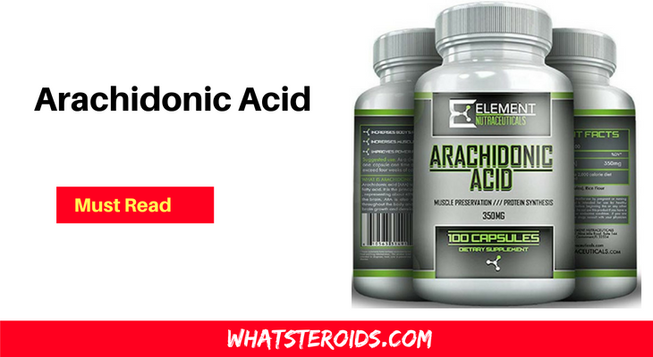 Arachidonic Acid