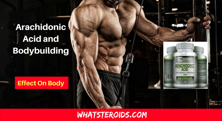 Arachidonic Acid and Bodybuilding