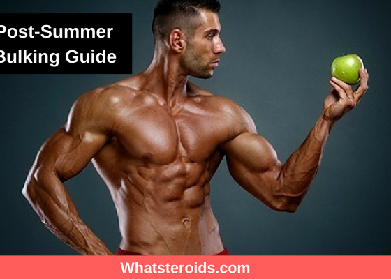 2018 Post-Summer Lean Bulking Guide