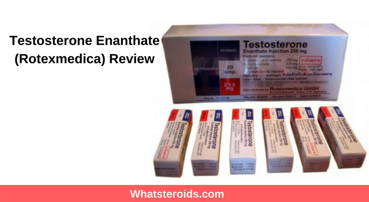 Testosterone Enanthate (Rotexmedica) Review