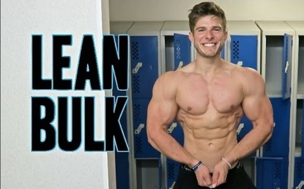 About lean bulking guide