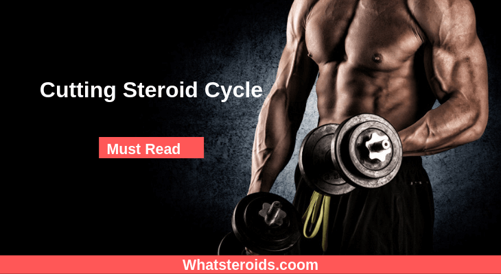 Cutting Steroid Cycle