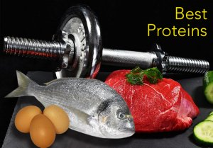 eggs fish meat Nutrition during steroid cycles