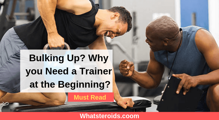 Bulking Up? Why you Need a Trainer at the Beginning?