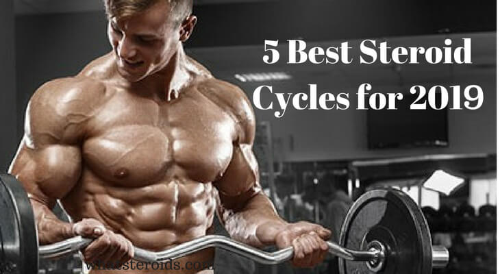 Top 5 Best Steroid Cycles for 2019
