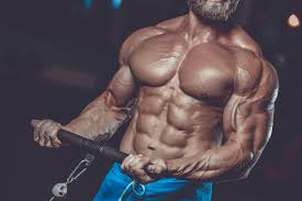 What Functions Do Anabolic Steroids Perform?